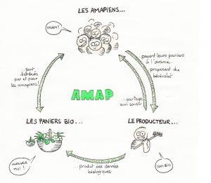 cercle-explic-amap