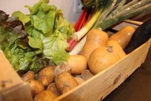 panier du 05 Janvier (avec échange du céléri par des butternut supplémentaires. au RDV : salades, pommes de terre, radis noir, butternut, blettes à côtes roses...